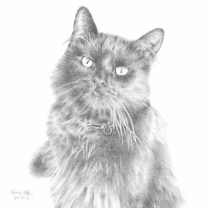 Mr-Bojangles-Hand-Drawing
